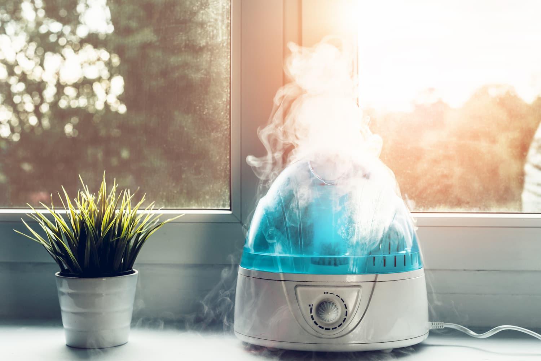 L'humidificateur d'air pour un intérieur plus respirable ?